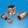 RCCN A-G&A-NPT Brass Cable Gland