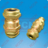 RCCN EX2 Brass Cable Gland