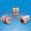 RCCN PGS Stainless Steel Cable Gland