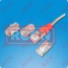 RCCN  RJ45 Modular Plug